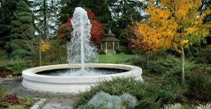 Things to keep in mind while selecting led light for fountain